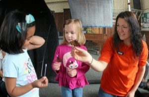 Students Meet and Learn about Butterflies